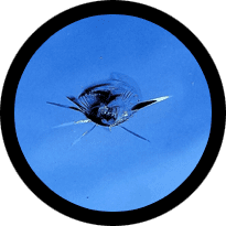 Tulsa Windshield Repair